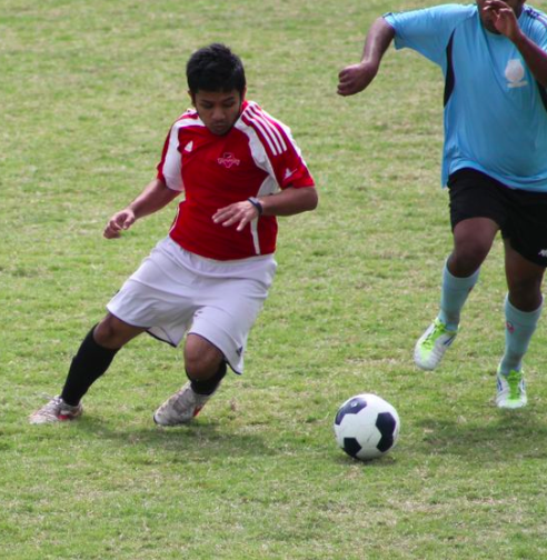 Ashrafi fights for the ball against Naita Phoenix this season.